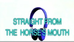 English in Minutes part 33 Straight from the Horse's Mouth