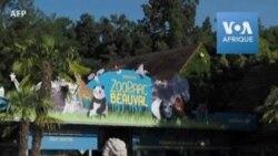 Le zoo le plus fréquenté de France rouvre ses portes aux visiteurs