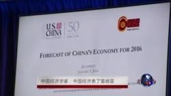 中国经济学家:中国经济患了重感冒
