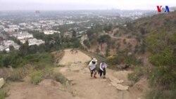 Empresa ofrece caminatas en grupo para socializar
