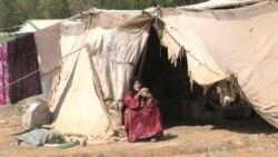 80,000 Syrians Take Refuge in Jordan