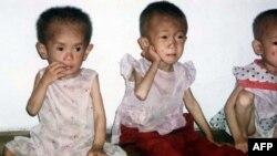 Trẻ em Bắc Triều Tiên bị suy dinh dưỡng