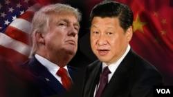 Tổng thống Hoa Kỳ Donald Trump và Chủ tịch Trung Quốc Tập Cận Bình.