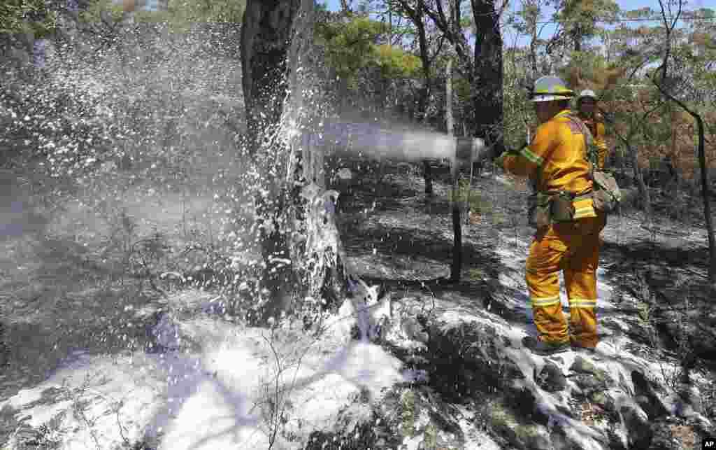 Firefighters spray foam on smoldering bush to help reduce reflash fires after a blaze swept through Faulconbridge, west of Sydney, Oct. 24, 2013.