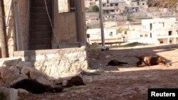Xác động vật tại Khan al-Assal, nơi được cho là có cuộc tấn công bằng vũ khí hóa học, Syria, 23/3/2013