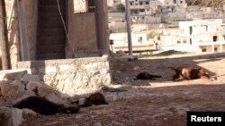 Beberapa binatang tewas diduga akibat penggunaan senjata kimia di distrik Khan al-Assal, dekat Aleppo, Suriah (foto: dok).