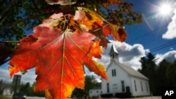 FILE - A maple tree shows its fall colors in Woodstock, Maine, September 17, 2010.