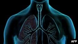 BM: 'Kanser, Şeker, Kalp Hastalığı Az Maliyetle Önlenebilir'