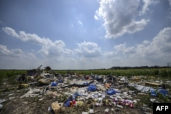 FILE - A photo taken on July 23, 2014 shows the crash site of the downed Malaysia Airlines flight MH17, in a field near the village of Grabove, in the Donetsk region of Ukraine.