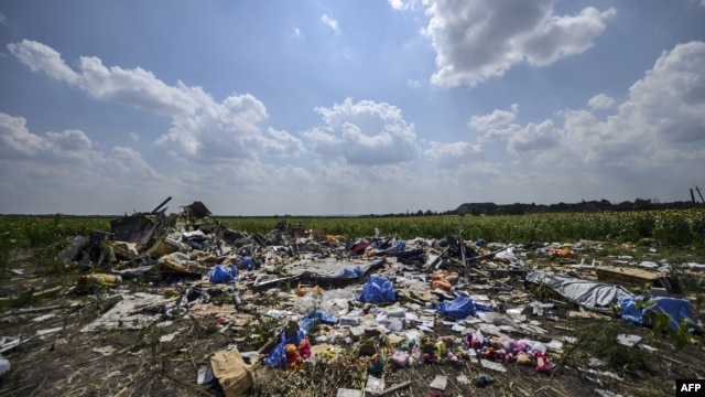 FILE - A photo taken on July 23, 2014, shows the crash site of downed Malaysia Airlines flight MH17, in a field near the village of Hrabove, Donetsk region, in eastern Ukraine.