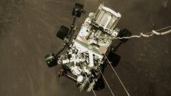 Persevirans na Marsu