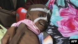 Somali hökuməti üsyançıların yardım işçilərinin aclıq hökm sürən regionlara getməsinə mane olmasını qınayıb