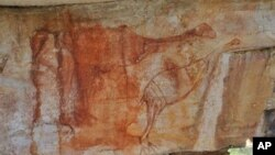 This undated archaeologist Ben Gunn handout photo received on May 31, 2010 shows an Aboriginal rock painting found in Australia's Arnhem Land; The red ochre painting shows two emu-like birds with their necks outstretched which are believed to show the meg