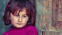 سید مہدی بخاری اور پاکستان کا خوبصورت چہرہ