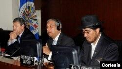 El Grupo de Trabajo Conjunto del Consejo Permanente y la CEPCIDI inició las discusiones sobre la Carta Social en septiembre de 2005. [Foto: OEA]