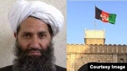 افغان حکومت وایي طالبان د جګړې د لارې کامیابېدی نشي او افغان حکومت سولې ته آماده دی