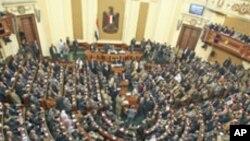 이집트 시민혁명 1주년 축하집회 열려