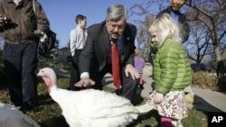 """资料照:爱奥华州州长布兰斯塔德和孙女布里奇特2012年10月20日在州长府火鸡赦免仪式上轻轻拍抚一只名叫""""罗丝""""的火鸡。"""