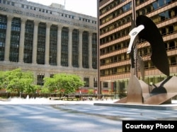 The Picasso Sculpture in Chicago's Daley Plaza