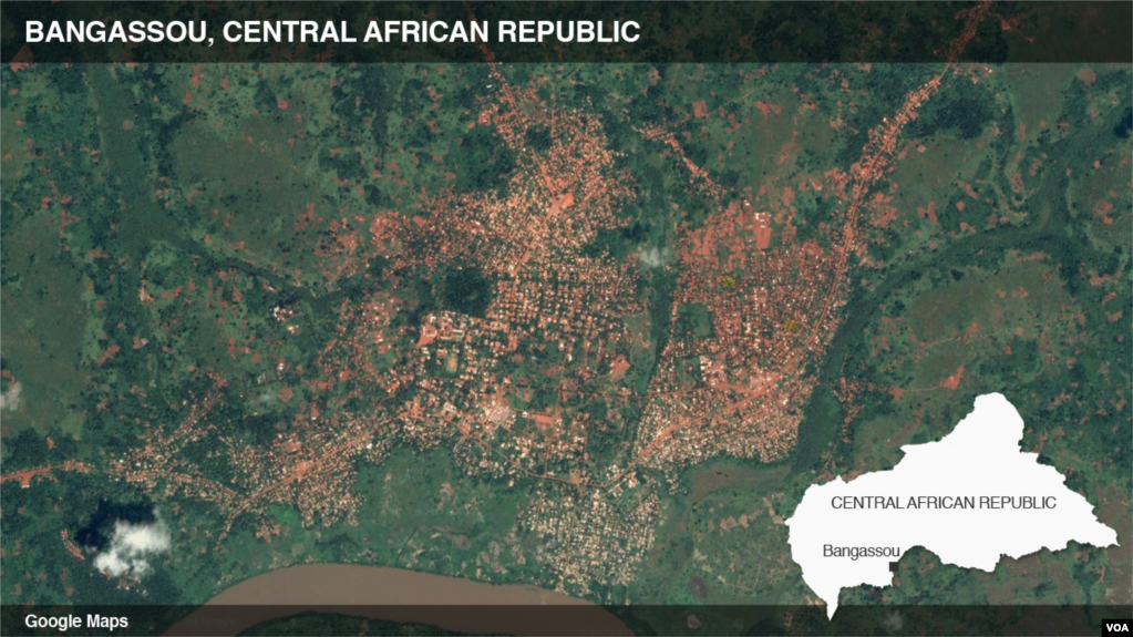 Red Cross Worker Shot Dead in Central African Republic