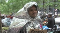 Diverse Voices Carry Occupy Movement's Message