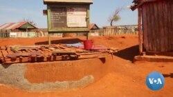 Madagascar Farmers Struggle Against Record Drought, Famine