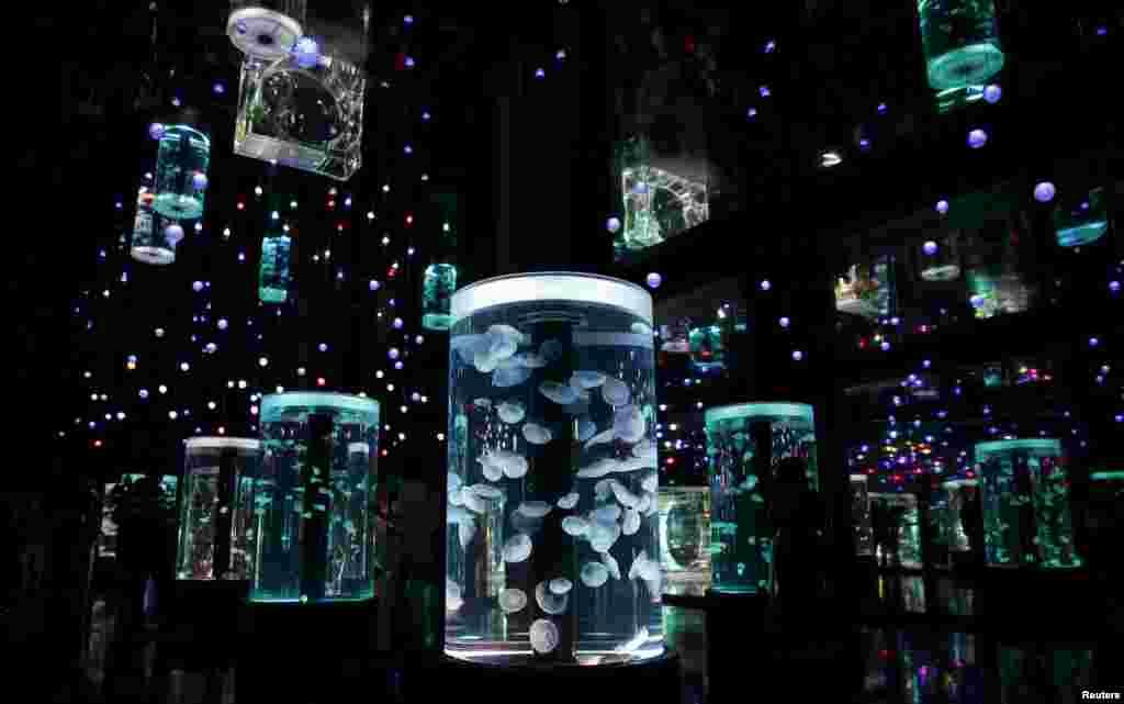 Posetioci posmatraju meduze u Epson Aqua Parku Tokiju. koji je ovih dana ponovo otvoren posle renoviranja.