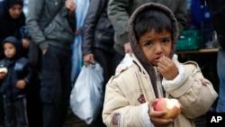 15일 세르비아와 크로아티아 국경 지역을 지나는 난민 어린이가 사과를 먹으며 배고픔을 달래고 있다.