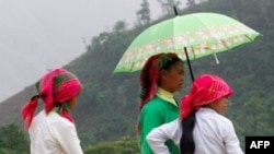 Người Hmong ở Việt Nam