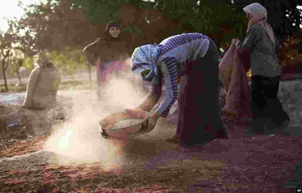 Phụ nữ làm việc ngoài đồng trong làngTarafat, Syria, ngày 14/10/2012.