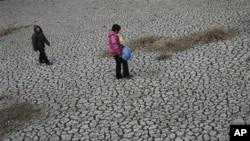 河南省一村庄池塘水干