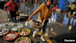 中国福建泉州的一渔民