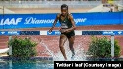 La Kényane Beatrice Chepkoech a pulvérisé le record du monde du 3000 m steeple avec un chrono de 8 min 44 sec 32 vendredi lors du meeting Ligue de diamant de Monaco, 21 juillet 2018. (Twitter/Iaaf)
