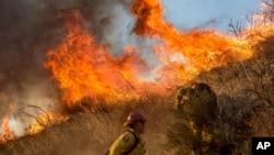 Nhân viên cứu hỏa chiến đấu với một đám cháy rừng ở Keenbrook, California, 17/8/2016.