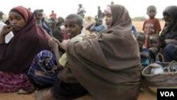 Perempuan dan anak-anak Somalia menjadi pengungsi di kamp Daadab, Kenya akibat konflik yang berkecamuk di negaranya (foto: dok).