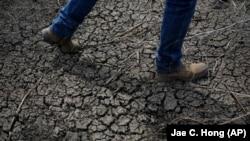 Cela fait trois ans que la sècheresse sévit en Californie (AP)