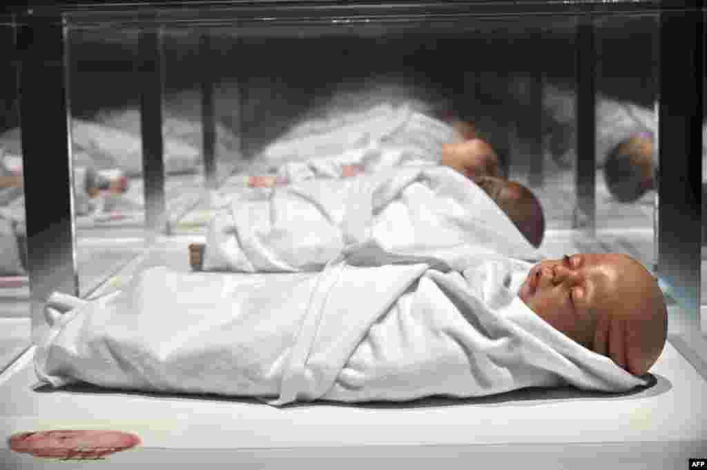 Umetnička instalacie Agate Hejns na izložbi u Muzeju umetnosti u Singapuru. Na izložbi su ukazane futuristički radovi više od 40 m eđunarodnihi umetnika, naučnika, tehnologa i dizajnera.