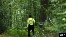 Вандалы уничтожили знаменитое на всю Великобританию терновое дерево