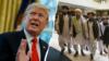 Presiden Trump Bela Pembatalan Pertemuan Rahasia dengan Taliban