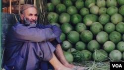 دهقانان شاکی اند که محصولات شان در داخل افغانستان بازار ندارد