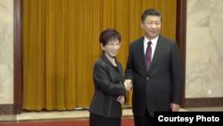 洪秀柱与习近平握手(取自洪秀柱脸书)