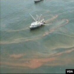 Obamina administracija pod pritiskom nakon izljeva nafte