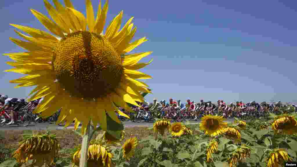Riders cycle during the 188-km (116.8 miles) 11th stage of the 102nd Tour de France cycling race from Pau to Cauterets in the French Pyrenees mountains.