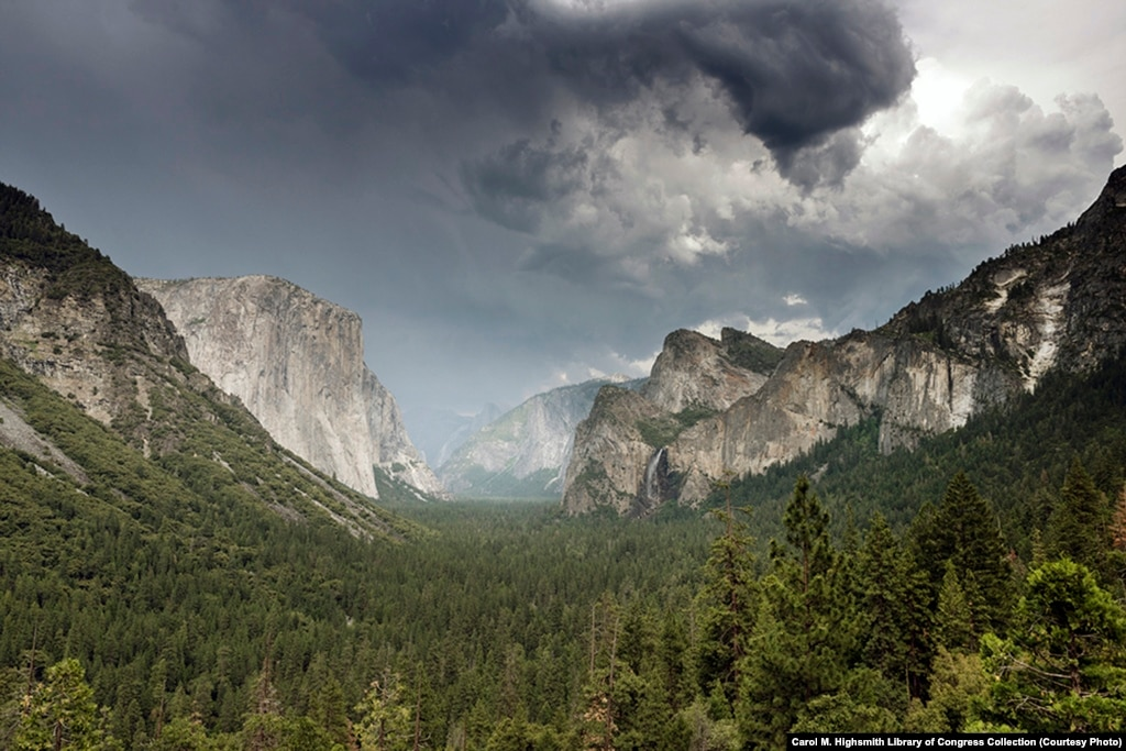 yosemite national park the national treasure essay Of this glorious range the yosemite national park is a central section,  park  embraces big, generous samples of the very best of the sierra treasure, it is,.