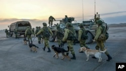 This undated handout photo released by the Russian Defense Ministry claims to show Russian Military engineers with sniffing dogs walking toward their APCs to operate in Aleppo, Syria.