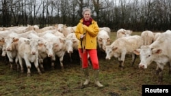This cow breeder poses for a photograph with a herd of her cows in Beurizot, France, February 2017. (REUTERS/Benoit Tessier)