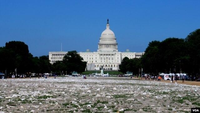 Durante los últimos tres años se acumularon un millón de huesos hechos a mano para un evento de instalación de tres días en el National Mall en Washington. [Foto: Iscar Blanco, VOA].