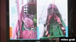 菲律賓官員在記者會上展示遭扣押中國漁船涉嫌販運瀕危海龜的視頻(視頻截圖)