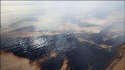 جبران ناپذیری نشت نفت در ساحل خلیج فارس