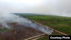"""Foto udara """"Save Our Bornoe"""" menggambarkan kawasan yang terbakar di Kalimantan Tengah. (Foto courtesy: SOB)"""